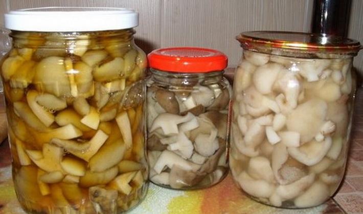 Картофель тушеная с вешенками рецепт