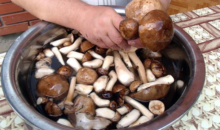 Как чистить белый гриб перед приготовлением (с фото)