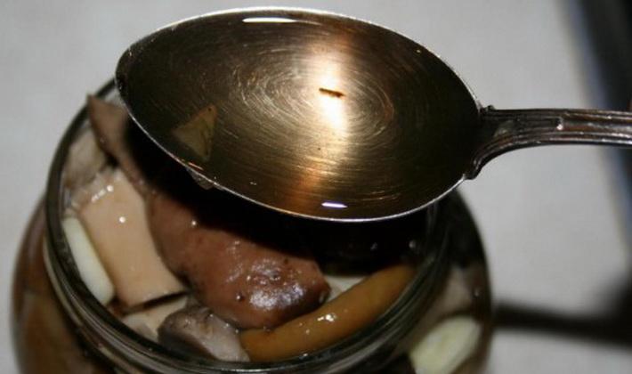 Рецепты приготовления желто-бурых рядовок