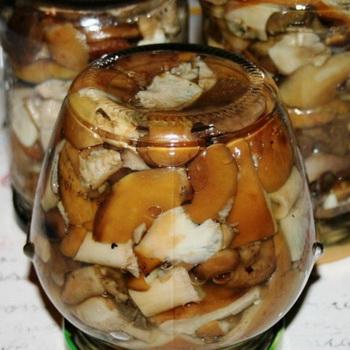 как приготовить грибы волнушки чтобы не горчили
