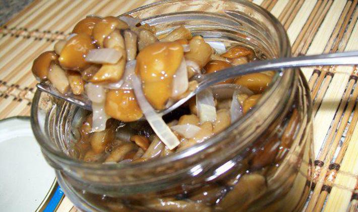 Как мариновать грибы на зиму в банках: рецепты приготовления 81