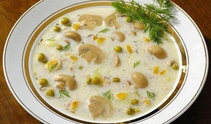 Вкусные супы из белых грибов: классические рецепты