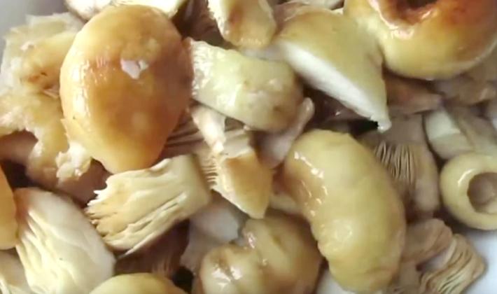 рецепт приготовления груздей на зиму горячим способом рецепты