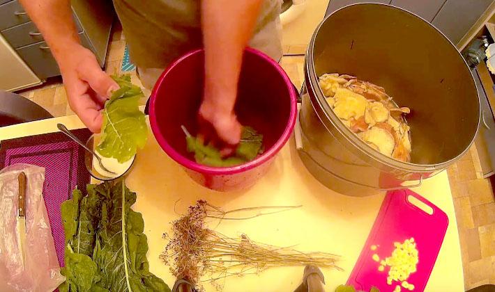 Грибы Волнушки на зиму. О том, как приготовить волнушки на зиму холодным и горячим способом