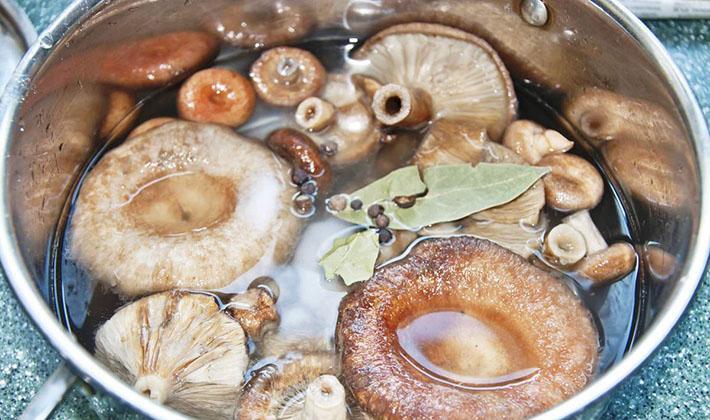 волнушки соленые горячим способом пошаговый рецепт