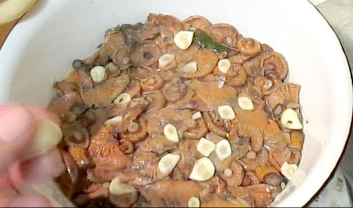 Способы засолки грибов волнушек на зиму