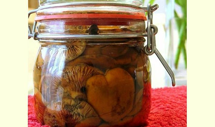 Как правильно готовить волнушки на зиму