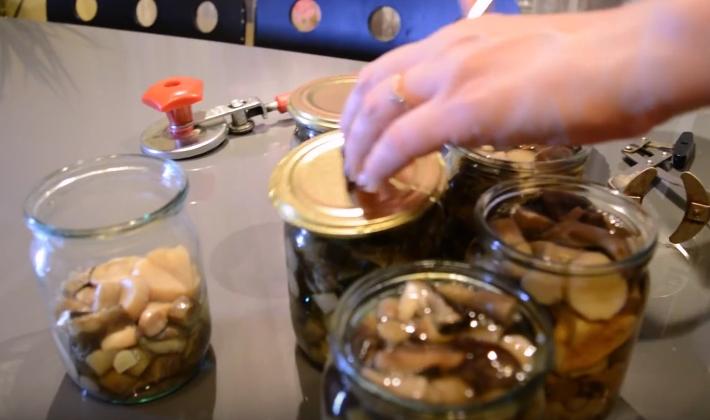 быстро продать рецеп на зиму грибов подсосновиков очень