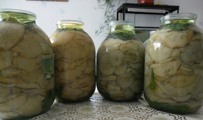 грузди белые рецепт приготовления с фото пошагово