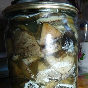 Соленые грузди покрылись плесенью: что делать, чтобы сохранить грибы