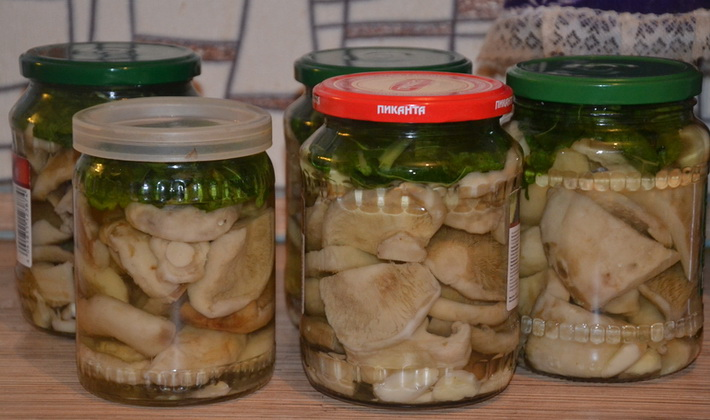 Вкусные грибные заготовки из груздей