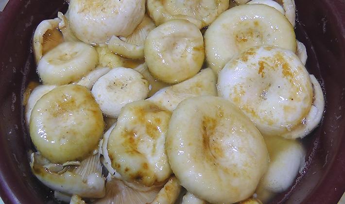 Рецепты приготовления хрустящих груздей на зиму