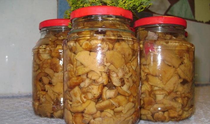 Маринованные лисички: вкусные рецепты заготовок