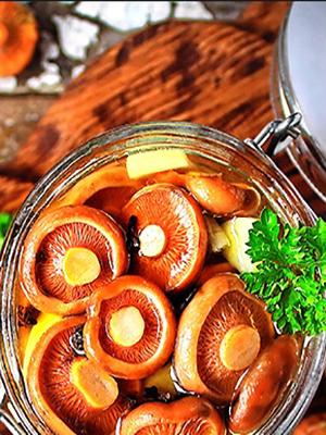 Почему рыжики горчат и как избавить грибы от горечи