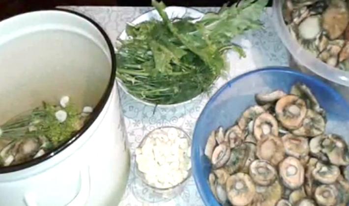 Что можно сделать с крупными рыжиками: домашние рецепты