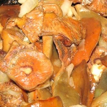 Простые способы засолки рыжиков: рецепты заготовок на зиму