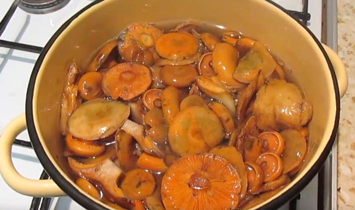 Рыжики, вареные на зиму: пошаговые рецепты