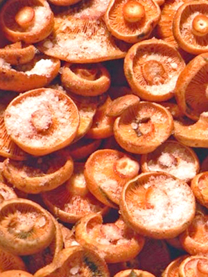 Приготовление рыжиков на зиму без варки