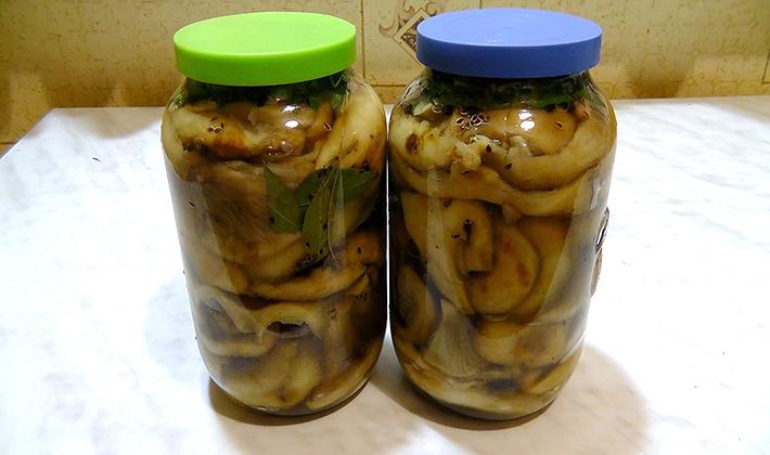 Хрустящие рыжики: рецепты засолки и маринования грибов