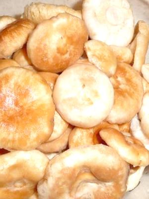 Замачивают ли грибы рыжики перед приготовлением?