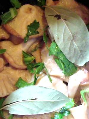 Рыжики под гнетом: рецепты домашней засолки грибов