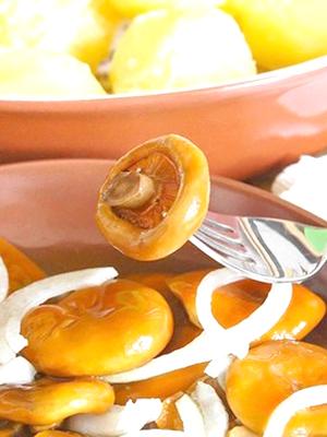 Приготовление маринада для рыжиков различными способами