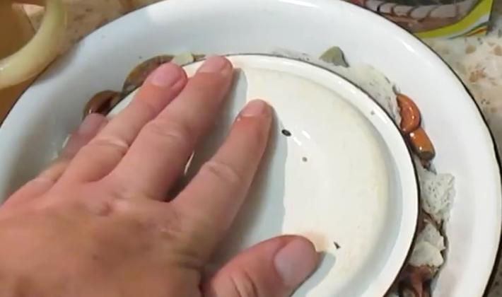 Горячая засолка рыжиков: популярные способы