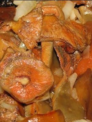 Рыжики, жареные в муке: рецепты грибных блюд