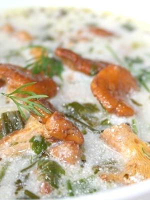 Грибовница из рыжиков: рецепты первых блюд