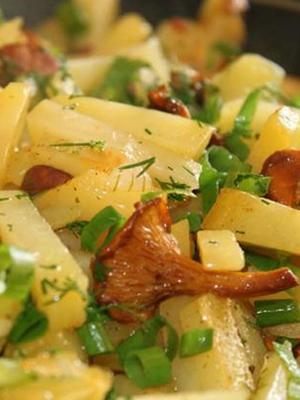 Рыжики в мультиварке: рецепты вкусных блюд