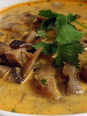 Супы из рыжиков: рецепты первых грибных блюд