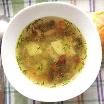 Рецепты приготовления супа из свежих опят