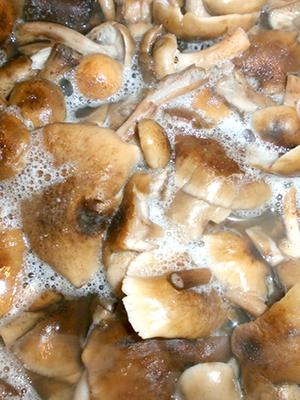 Как готовить вкусные блюда из королевских опят