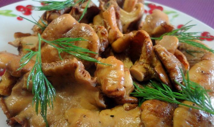 Жареные лисички: популярные рецепты приготовления