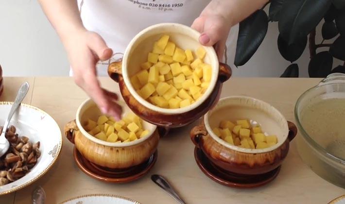 лисички с курицей рецепты приготовления