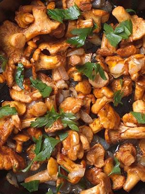 Лисички, жареные с луком: рецепты для начинающих хозяек