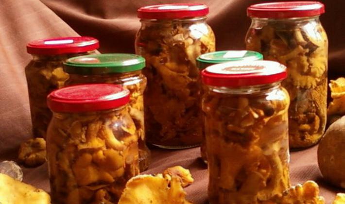 Приготовление лисичек: простые домашние рецепты