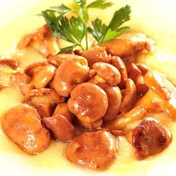 Лучшие блюда из лисичек: домашние рецепты