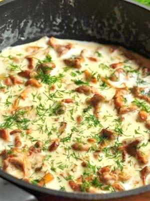 Лисички со сметаной: вкусные рецепты грибных блюд