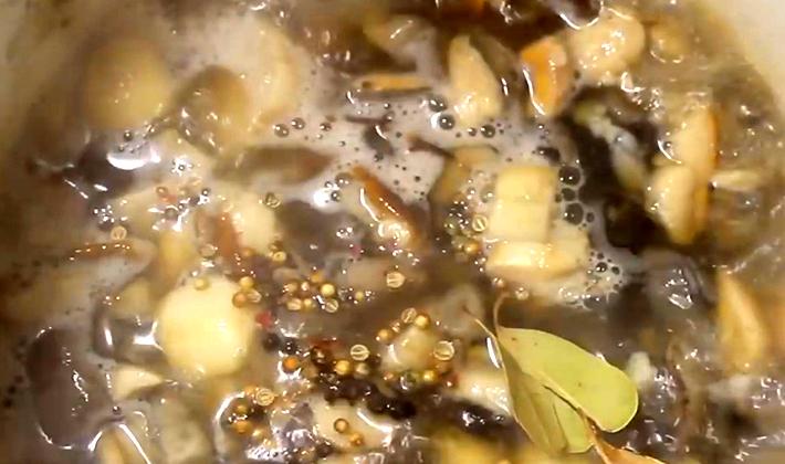 Как готовить грибы бело-коричневые рядовки