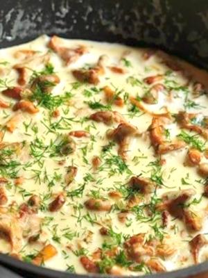 Лисички в сметане: рецепты грибных блюд