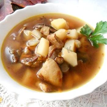 Рецепты вкусных супов из грибов рядовок