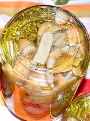 Вкусные заготовки из рядовок на зиму