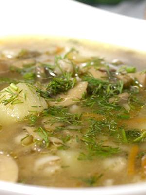 Супы из груздей: рецепты первых блюд