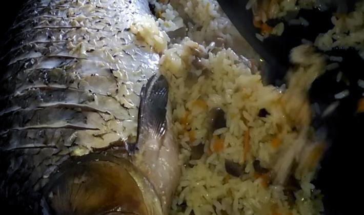 Блюда из шампиньонов с рисом