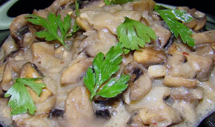 Шампиньоны в сметанном соусе: рецепты приготовления грибов