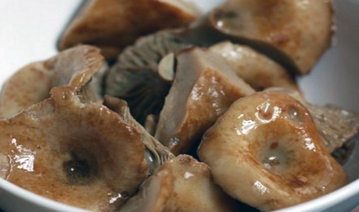 Соление грибов: рецепты заготовок на зиму